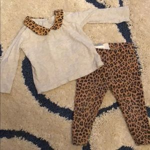 Baby Gap Leopard pants and Peter Pan collar top